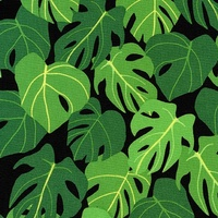 Robert Kaufman, Sunporch, Foliage Black